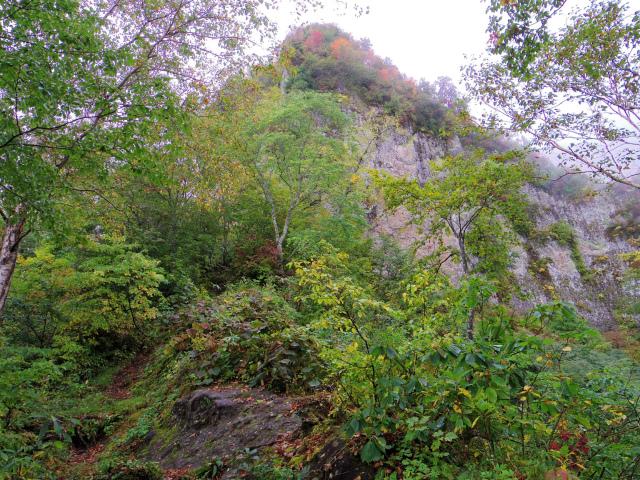 戸隠山(奥社~九頭龍山~牧場) 登山口コースガイド 岩壁【登山口ナビ】