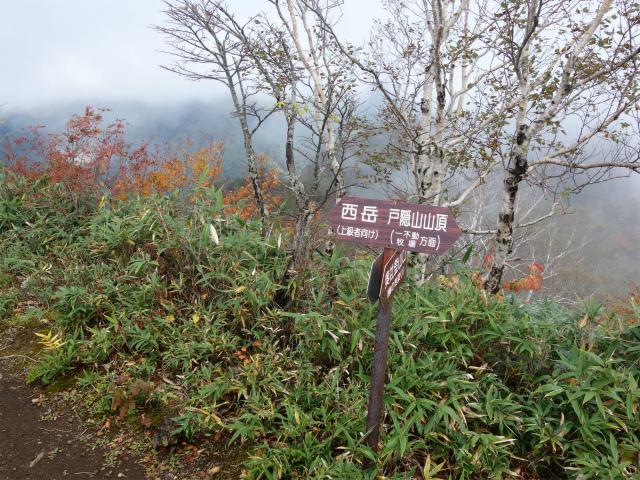 戸隠山(奥社~九頭龍山~牧場)登山口コースガイド 八方睨【登山口ナビ】