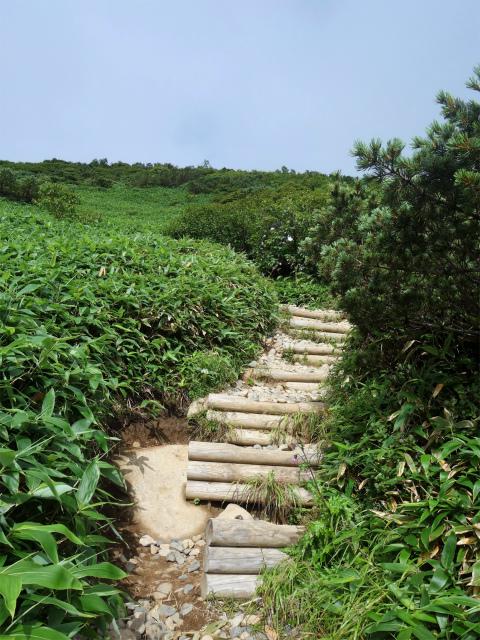 那須岳(朝日岳~三本槍岳) 登山口コースガイド 階段の急登【登山口ナビ】