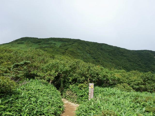 那須岳(朝日岳~三本槍岳) 登山口コースガイド スダレ山鞍部【登山口ナビ】