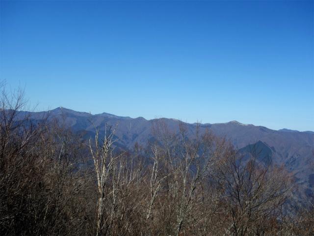 三頭山(ヌカザス尾根)登山口コースガイド 西峰山頂からの鷹ノ巣山【登山口ナビ】
