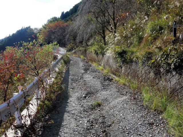 鷹ノ巣山(浅間尾根)登山口コースガイド 奥沢林道未舗装路【登山口ナビ】