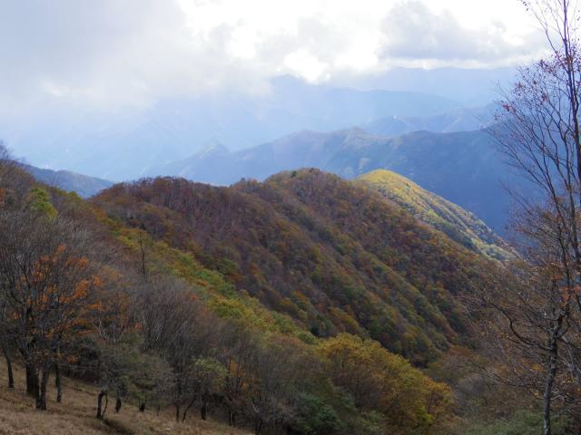 鷹ノ巣山(浅間尾根)登山口コースガイド 石尾根稜線からの浅間尾根【登山口ナビ】