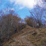 鷹ノ巣山(浅間尾根)登山口コースガイド 石尾根稜線【登山口ナビ】