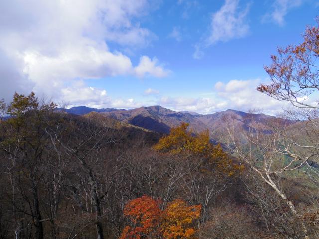 鷹ノ巣山(浅間尾根)登山口コースガイド 石尾根稜線からの雲取山【登山口ナビ】