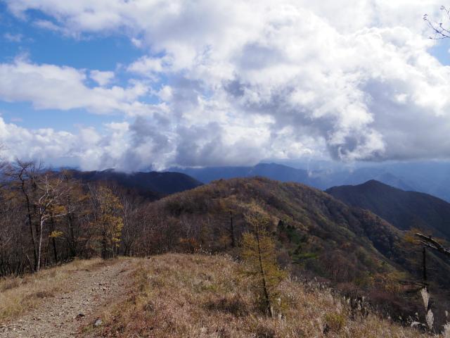 鷹ノ巣山(浅間尾根)登山口コースガイド 鷹ノ巣山山頂からの奥多摩の眺望【登山口ナビ】