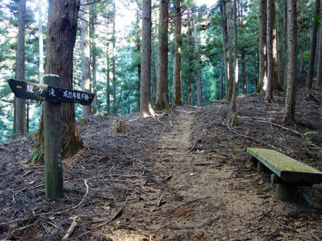 荒船山(威怒牟畿不動~艫岩~左岸コース周回)登山口コースガイド ベンチ【登山口ナビ】