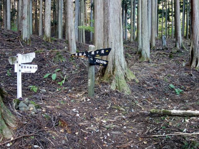 荒船山(威怒牟畿不動~艫岩~左岸コース周回)登山口コースガイド 星尾峠分岐【登山口ナビ】
