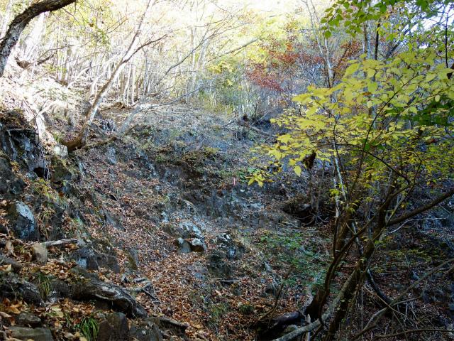荒船山(威怒牟畿不動~艫岩~左岸コース周回)登山口コースガイド 急登【登山口ナビ】