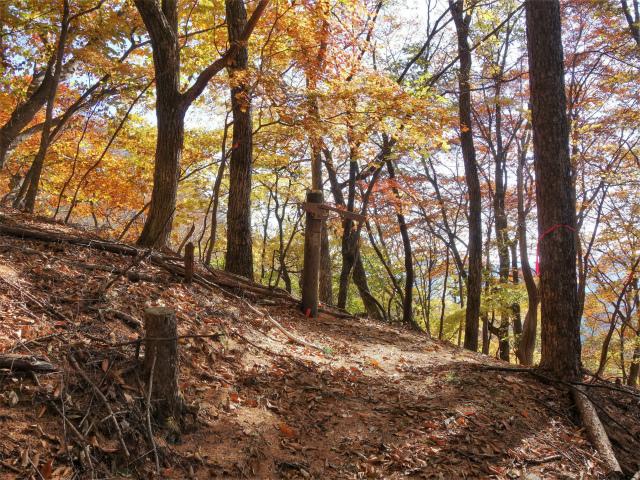荒船山(威怒牟畿不動~艫岩~左岸コース周回)登山口コースガイド 稜線分岐【登山口ナビ】