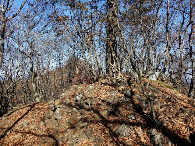 荒船山(威怒牟畿不動~艫岩~左岸コース周回)登山口コースガイド 稜線の小ピーク【登山口ナビ】