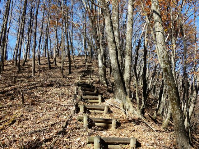 荒船山(威怒牟畿不動~艫岩~左岸コース周回)登山口コースガイド 階段【登山口ナビ】