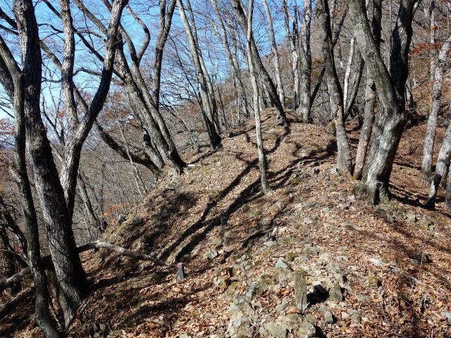荒船山(威怒牟畿不動~艫岩~左岸コース周回)登山口コースガイド 巻き道分岐【登山口ナビ】