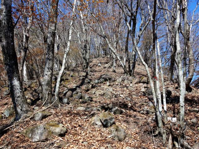 荒船山(威怒牟畿不動~艫岩~左岸コース周回)登山口コースガイド 山頂直下の急登【登山口ナビ】