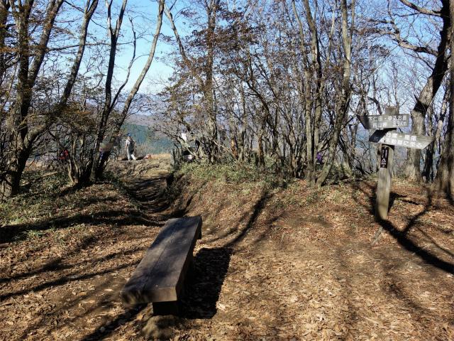 荒船山(威怒牟畿不動~艫岩~左岸コース周回)登山口コースガイド 艫岩展望台【登山口ナビ】