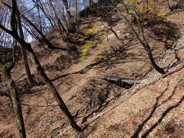 荒船山(威怒牟畿不動~艫岩~左岸コース周回)登山口コースガイド【登山口ナビ】