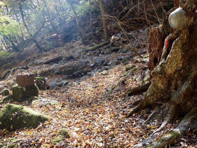 荒船山(威怒牟畿不動~艫岩~左岸コース周回)登山口コースガイド  ナベ【登山口ナビ】