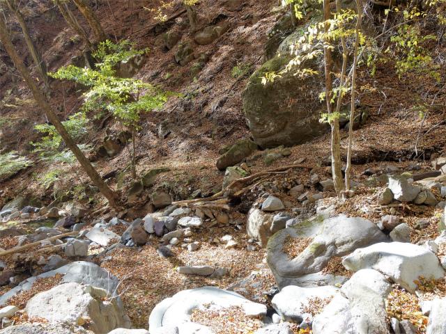 荒船山(威怒牟畿不動~艫岩~左岸コース周回)登山口コースガイド  渡渉【登山口ナビ】