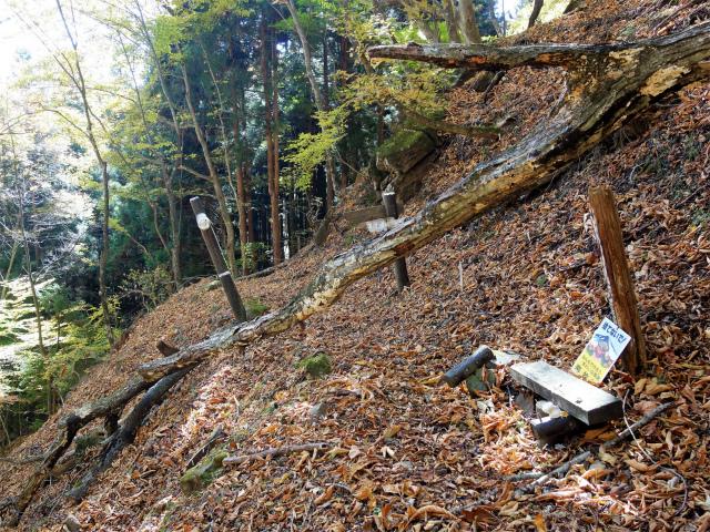 荒船山(威怒牟畿不動~艫岩~左岸コース周回)登山口コースガイド  不動分岐【登山口ナビ】