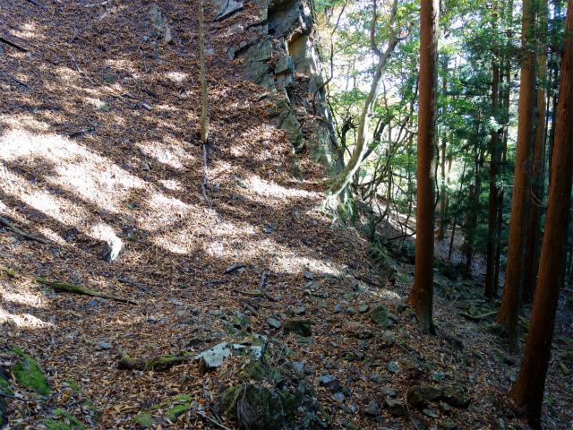 荒船山(威怒牟畿不動~艫岩~左岸コース周回)登山口コースガイド 岩壁 【登山口ナビ】