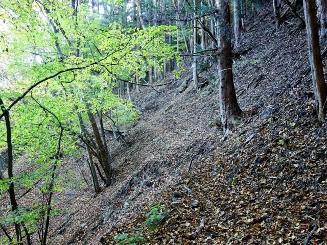 荒船山(威怒牟畿不動~艫岩~左岸コース周回)登山口コースガイド 高巻き 【登山口ナビ】