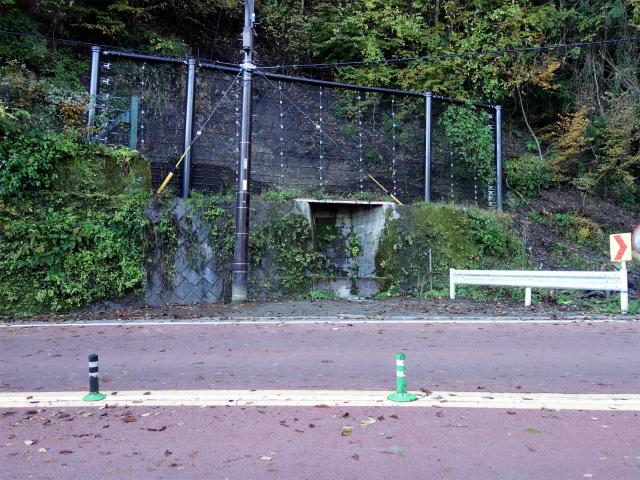 三頭山(ヌカザス尾根)登山口コースガイド 三頭の名水【登山口ナビ】