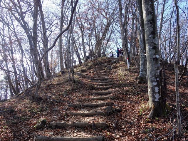 三頭山(ヌカザス尾根)登山口コースガイド 山頂直下東峰(1527.5m)の山頂標の階段【登山口ナビ】