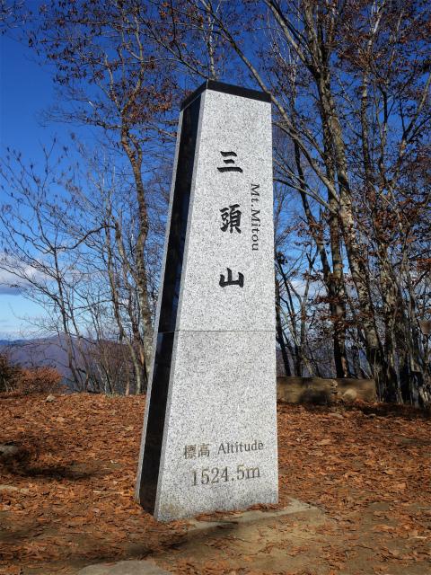 三頭山(ヌカザス尾根)登山口コースガイド 西峰山頂【登山口ナビ】