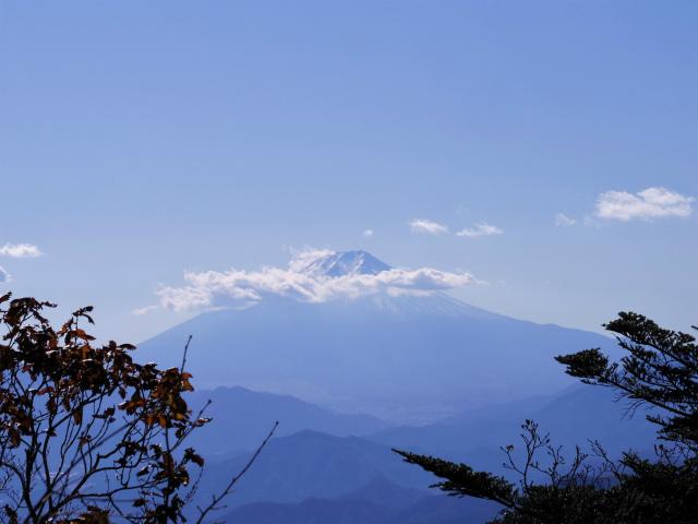 三頭山(ヌカザス尾根)登山口コースガイド 西峰山頂からの富士山【登山口ナビ】