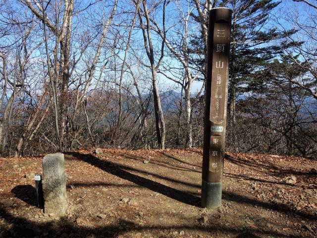 三頭山(ヌカザス尾根)登山口コースガイド 東峰山頂【登山口ナビ】