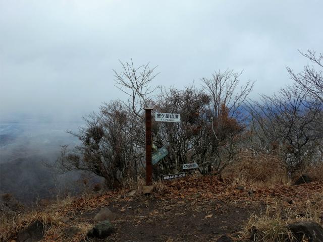 茅ヶ岳(金ヶ岳~千本桜公園) 登山口コースガイド 金ヶ岳山頂【登山口ナビ】