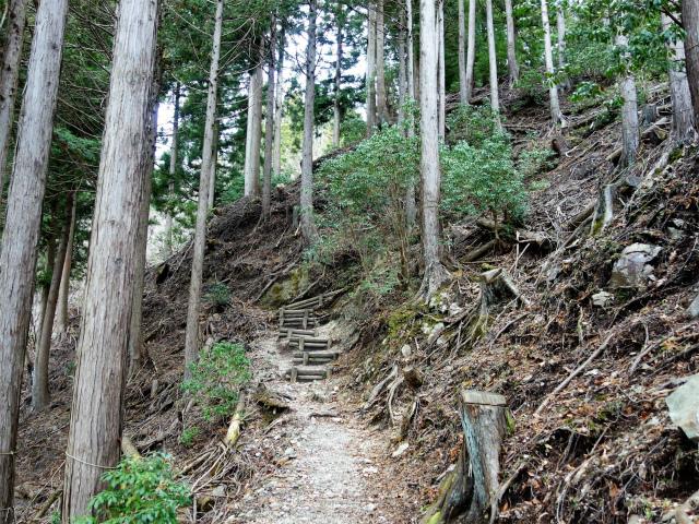 畔ヶ丸(西丹沢ビジターセンター~下棚・本棚) 登山口コースガイド 階段の急登【登山口ナビ】