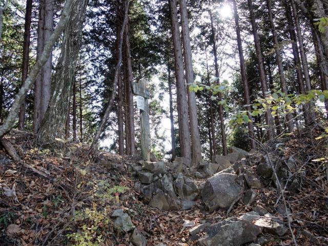 三頭山(サイグチ沢コース)登山口コースガイド 分岐【登山口ナビ】