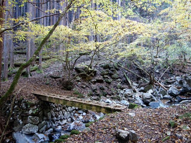 三頭山(サイグチ沢コース)登山口コースガイド 木橋【登山口ナビ】