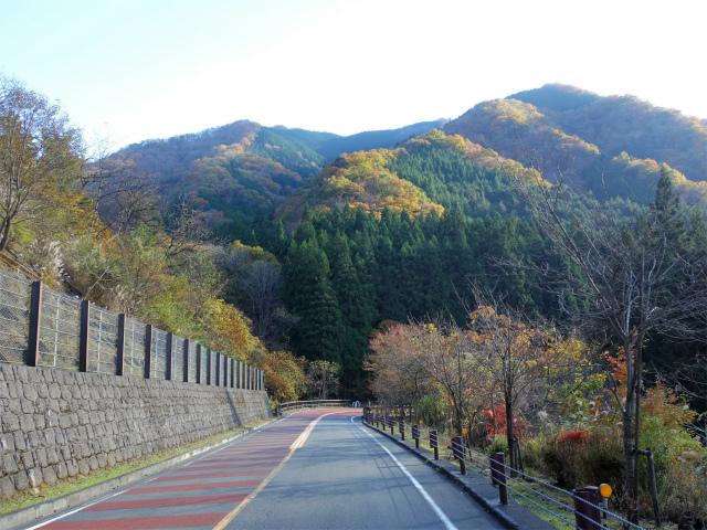 三頭山(サイグチ沢コース)登山口コースガイド 奥多摩周遊道路【登山口ナビ】