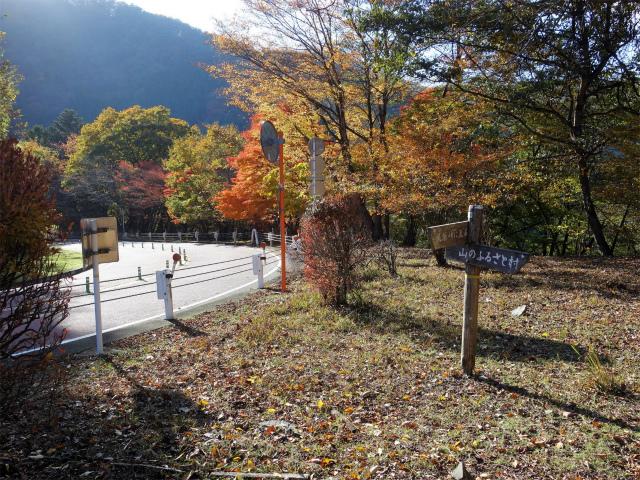 三頭山(サイグチ沢コース)登山口コースガイド 風張峠分岐【登山口ナビ】