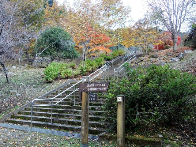 三頭山(サイグチ沢コース)登山口コースガイド 山のふるさと村【登山口ナビ】