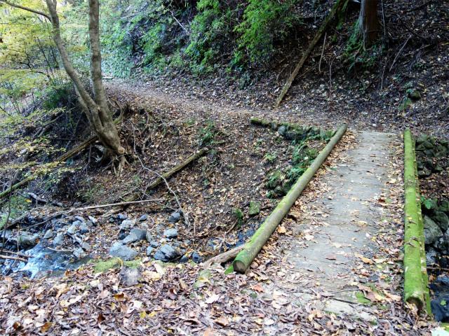 三頭山(サイグチ沢コース)登山口コースガイド 山のふるさと村遊歩道【登山口ナビ】
