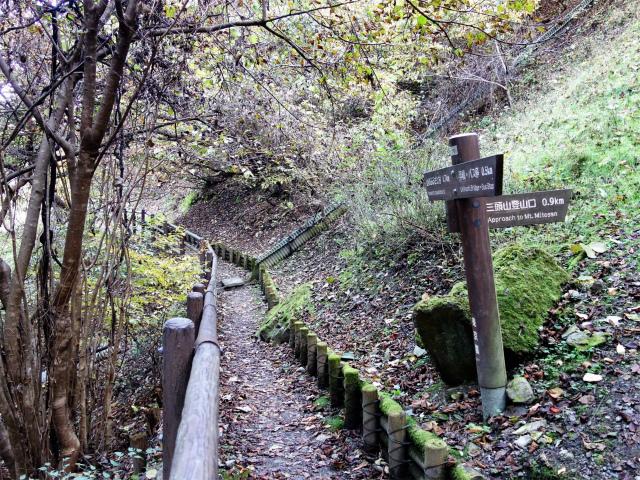 三頭山(サイグチ沢コース)登山口コースガイド 奥多摩湖畔の小道分岐【登山口ナビ】