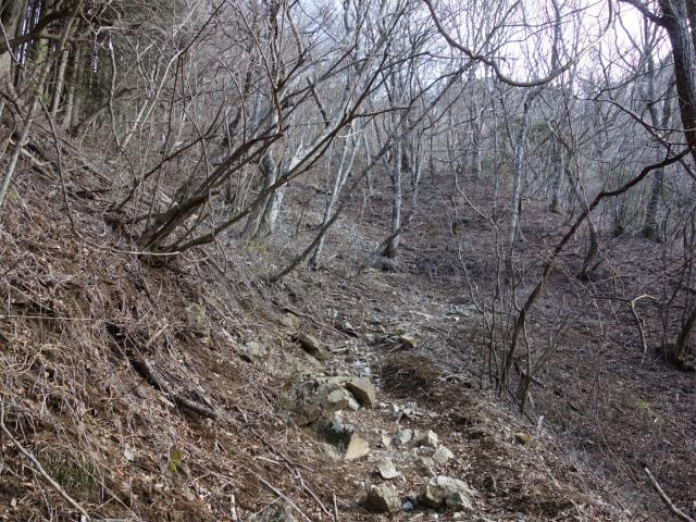 大室山(道志の湯~加入道山)登山口コースガイド トラバース【登山口ナビ】