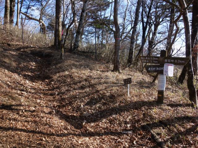 大室山(道志の湯~加入道山)登山口コースガイド 稜線分岐【登山口ナビ】