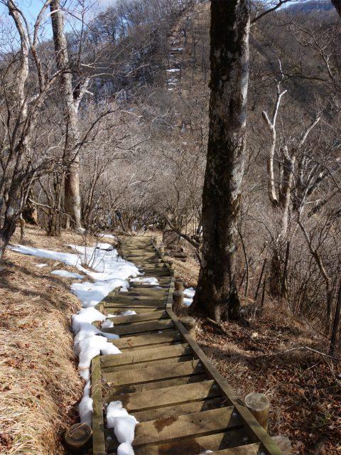 大室山(道志の湯~加入道山)登山口コースガイド 馬場峠階段【登山口ナビ】