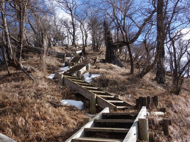 大室山(道志の湯~加入道山)登山口コースガイド 前大室山頂直下の階段【登山口ナビ】