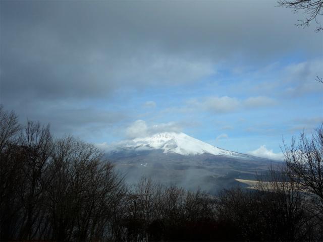 越前岳(愛鷹山神社~黒岳~大沢登山道)登山口コースガイド 黒岳山頂からの富士山【登山口ナビ】