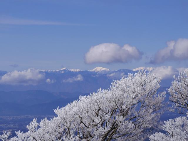 越前岳~位牌岳(愛鷹山神社口周回) 登山口コースガイド 越前岳山頂から南アルプス【登山口ナビ】