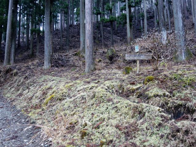 三ノ塔(BOSCO~ヨモギ平)登山口コースガイド 登山道入口【登山口ナビ】