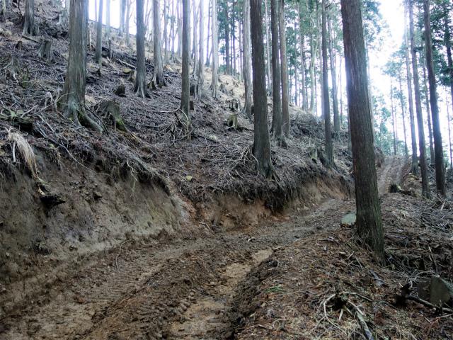 三ノ塔(BOSCO~ヨモギ平)登山口コースガイド ブルドーザー道【登山口ナビ】