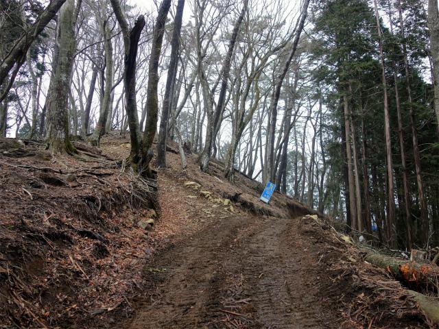 三ノ塔(BOSCO~ヨモギ平)登山口コースガイド ブルドーザー道分岐【登山口ナビ】