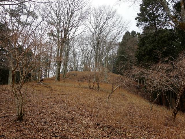 三ノ塔(BOSCO~ヨモギ平)登山口コースガイド ピーク手前の植生保護柵【登山口ナビ】