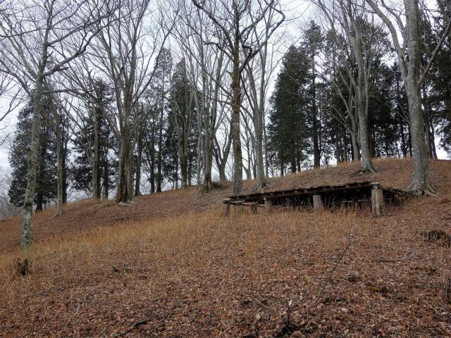 三ノ塔(BOSCO~ヨモギ平)登山口コースガイド 蓬平のベンチ【登山口ナビ】